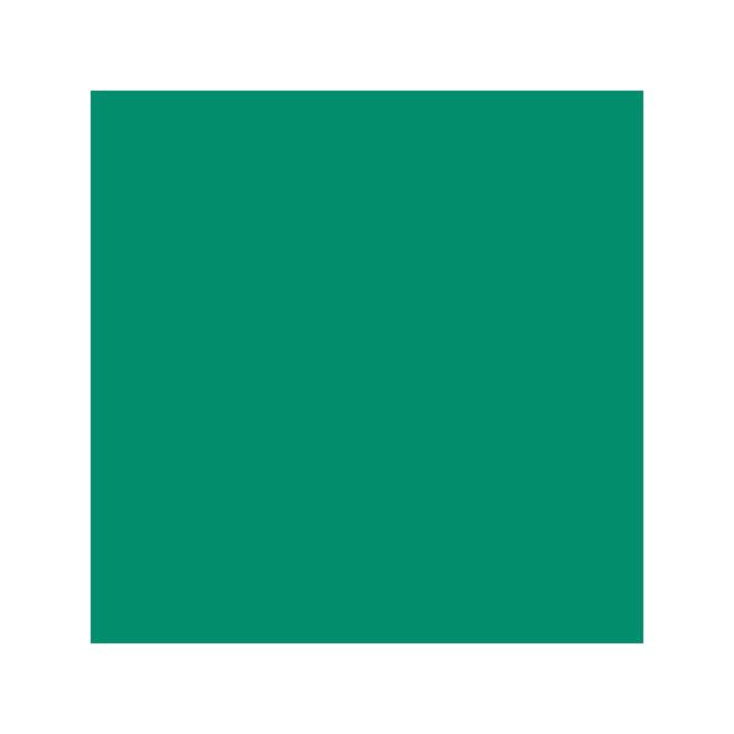 Leaf green icing color - Wilton - 28gr
